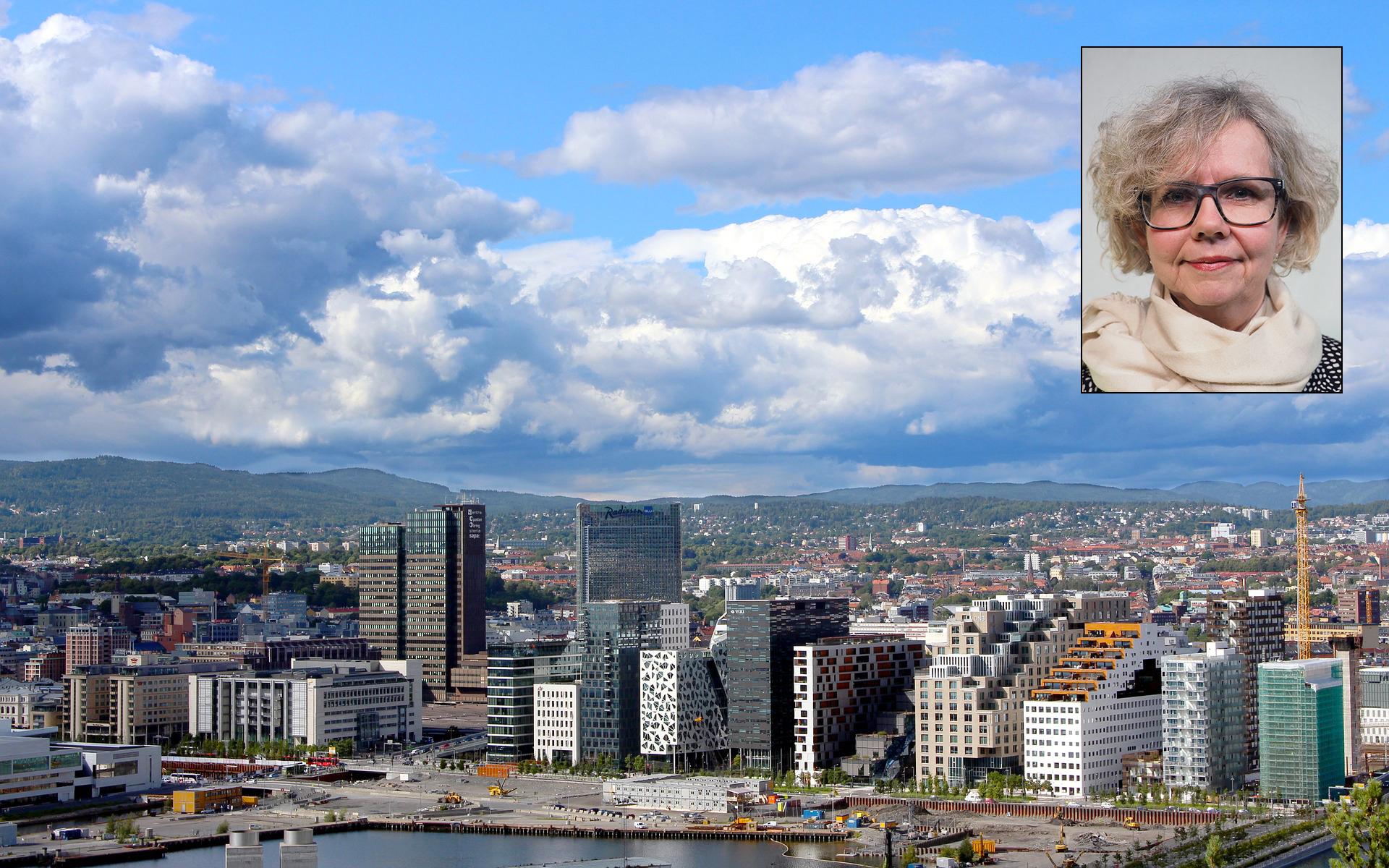 Stikker investorene av med for mange av de store boligene sentralt i Oslo?
